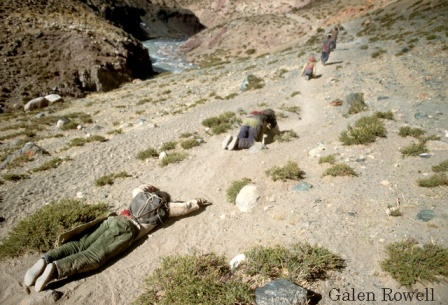 Pilgrims Prostrating Themselves