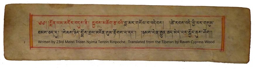 Nyima Tenzin Monlam Pecha TIB 2
